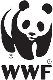 (C) WWF
